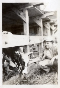 Rufus King with Heifer Project heifers in San Juan, Puerto Rico.