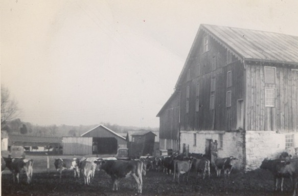 The Roger Roop farm in Union Bridge, Maryland, circa 1946. Photo courtesy of Kenneth West.