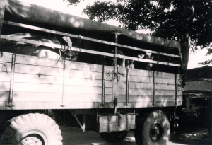 On June 22, 1950, 42 heifers arrive for distribution in the Reichswald settlement. The makeshift school in a barrack until a new one can be constructed, 1950. Photo courtesy of Heimatvereins Reichswalde.