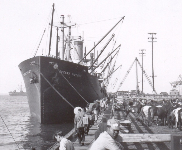 The cowboy crew boards the S. S. Queens Victory for their trip to Germany in June 1946.