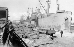 The F. J. Luckenbach docked in Nowyport, Poland, end of March 1946.